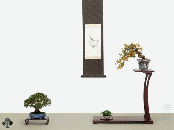 Shohin display Morten Albek