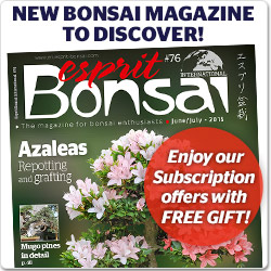 Esprit Bonsai magazine