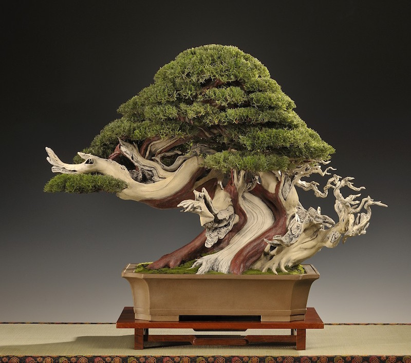 Artificial Bonsai Bonsai Empire