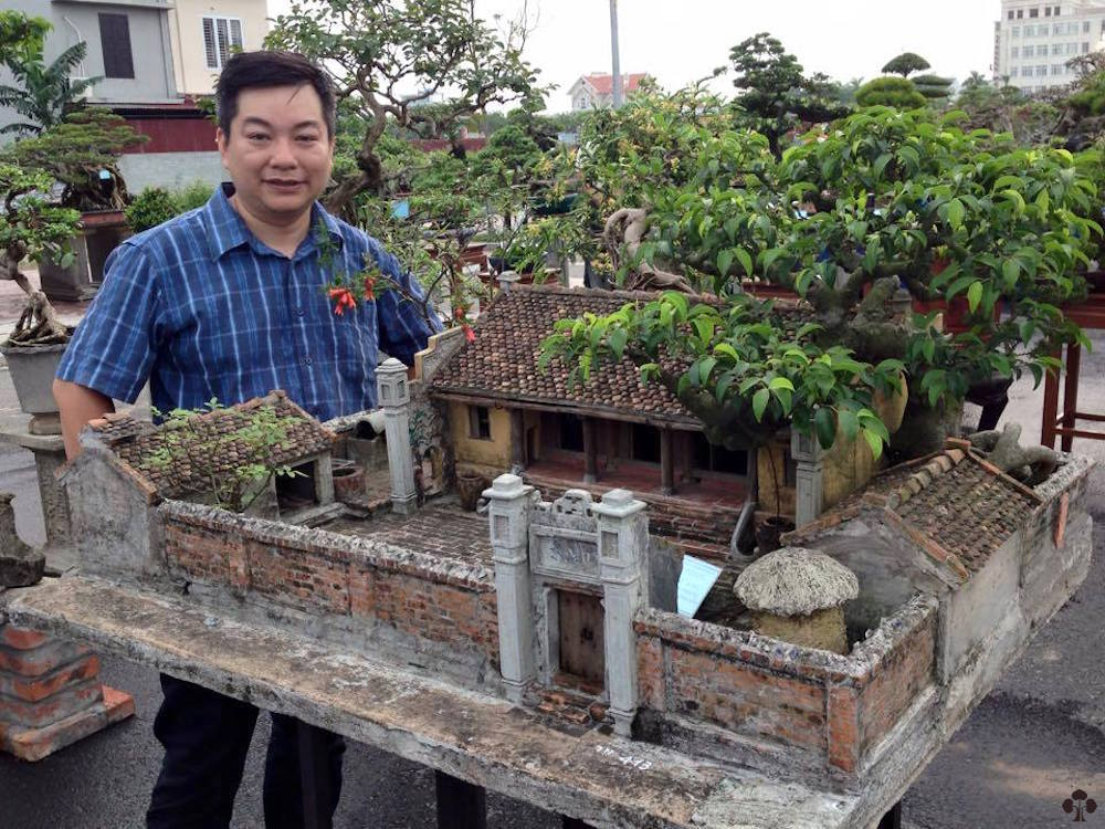 Vietnamese Miniature Landscape - Bonsai Empire
