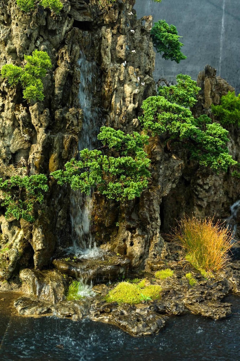 The Bonsai landscape - Bonsai Empire