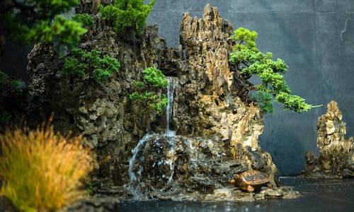 The Bonsai landscape