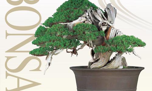 The 8th World Bonsai Convention