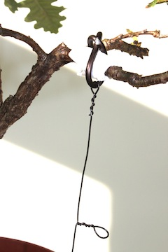 Bonsai guy-wiring