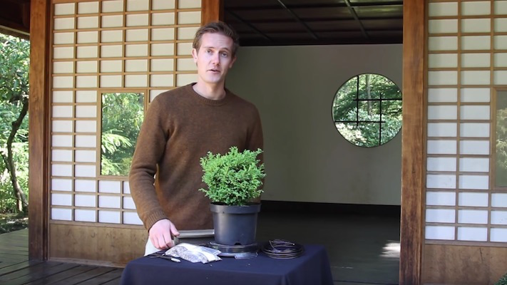 Oscar, founder Bonsai Empire