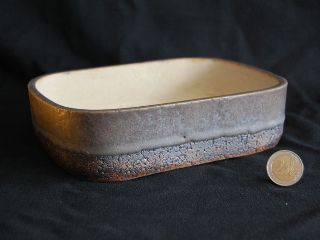 Gregory Delattre bonsai pot