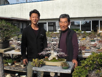 Taishoen Bonsai nursery