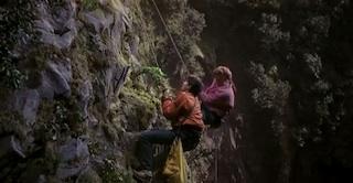 Bonsai In The Karate Kid Movie Bonsai Empire