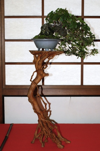 Bonsai rootstand