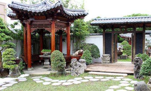 Amy Liang Bonsai museum