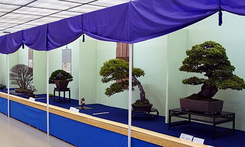 Taikan Ten exhibition 2018