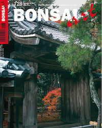 Bonsai Art magazine