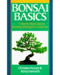 Bonsai Basics Pessey Samson