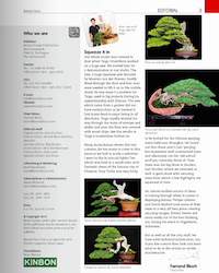 Bonsai Focus magazine