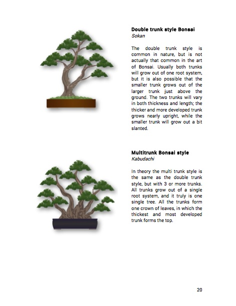 Recommended Bonsai Books Bonsai Empire
