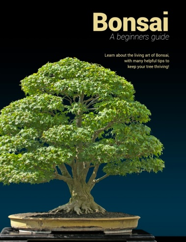 99 Store Near Me >> Recommended Bonsai books - Bonsai Empire