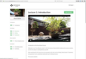 The online Ficus course