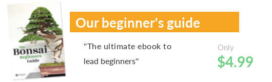 The Bonsai beginners guide ebook