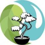 AidansTrees's Avatar